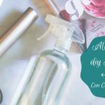DIY Hairspray
